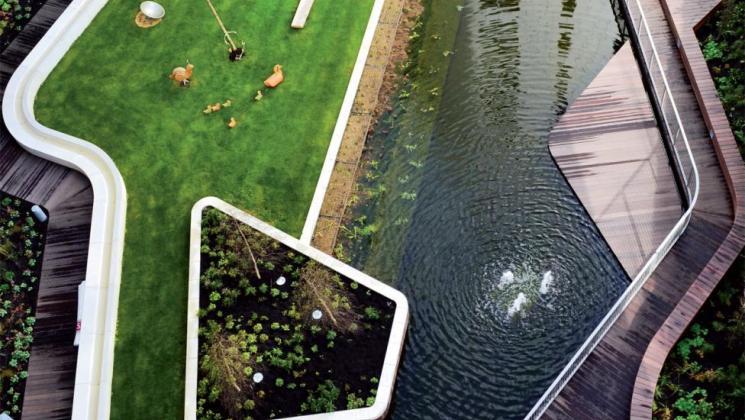 Firestone PondGard EPDM gumi tófólia feszített víztükrű tó
